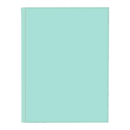 Schrift harde kaft A5 met lijn pastel groen