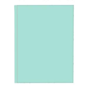 Schrift harde kaft A4 ruit Pastel Groen